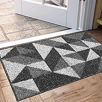 DEXI Indoor Doormat, Non Slip Absorbent Resist Dirt Entrance Rug, 20€x32€ Machine Washable Low-Profile Inside Floor Door Mat