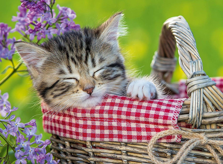 Ravensburger Sleeping Kitten Puzzle (100-Piece) 10539