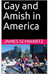 Gay and Amish in America Kindle Edition