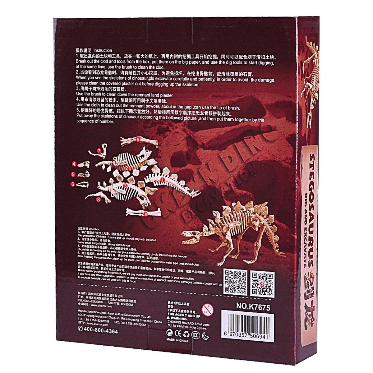 Dinosaur Excavation Kit - 6 Type Dinosaur Dig Kit Toy (Stegosaurus)
