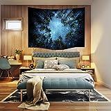 Arazzo da parete, motivo: notte celeste, notte stellata, galassia piena di stelle; telo da appendere, telo dipinto da parete d'arredamento, artistico, 60*40 inch