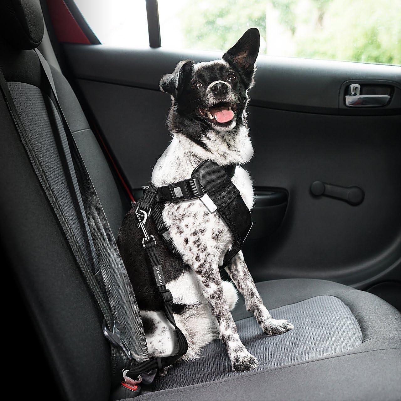 Cinturón de Seguridad para Coche para Perros