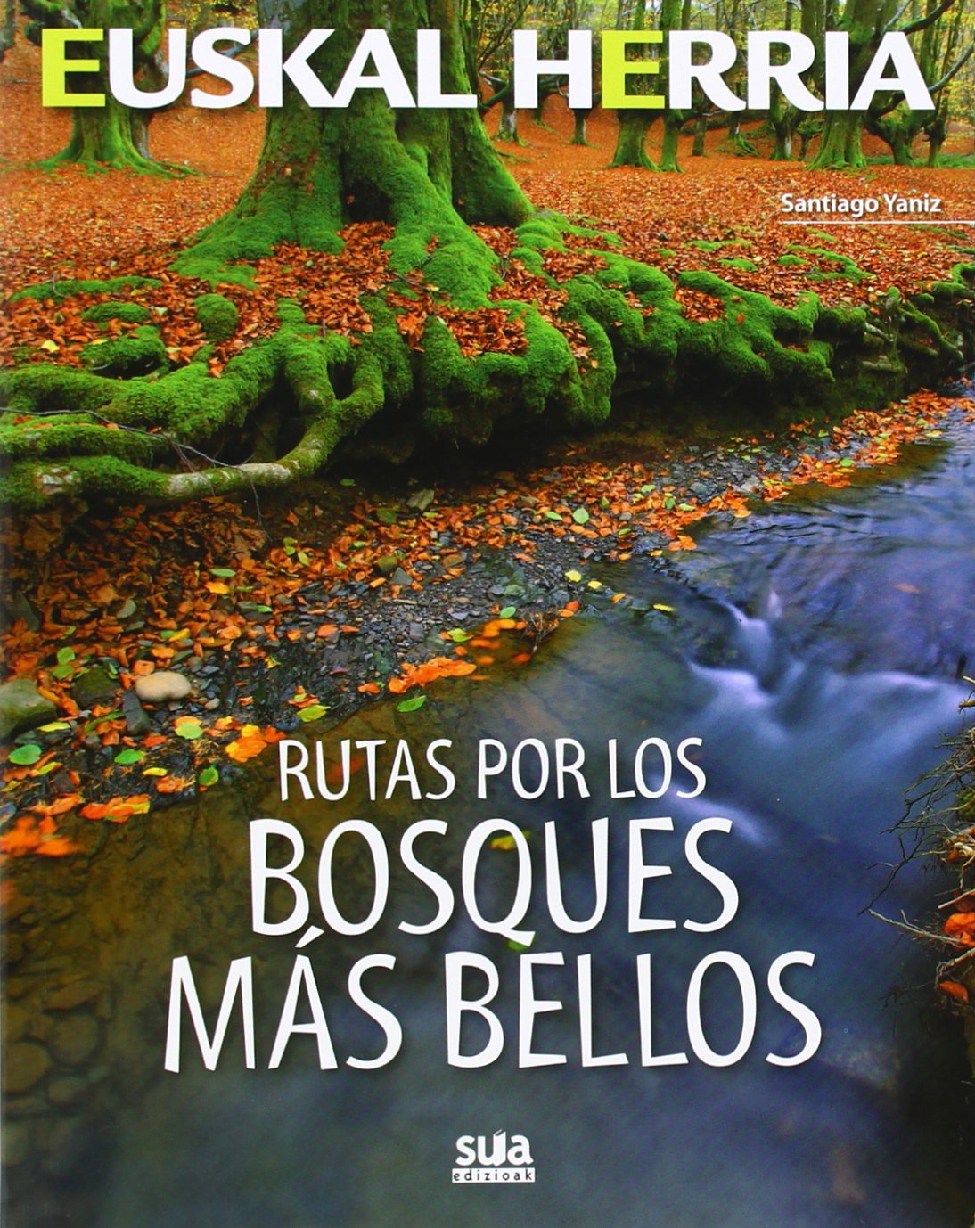Rutas por los bosques mas bellos (Euskal Herria) Tapa blanda – 25 abr 2014 Santiago Yaniz Aramendia SUA 8482165399 Guías de ecoturismo