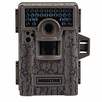 Amazon.com : Moultrie M-880 Low Glow Game Camera : Hunting Game ...