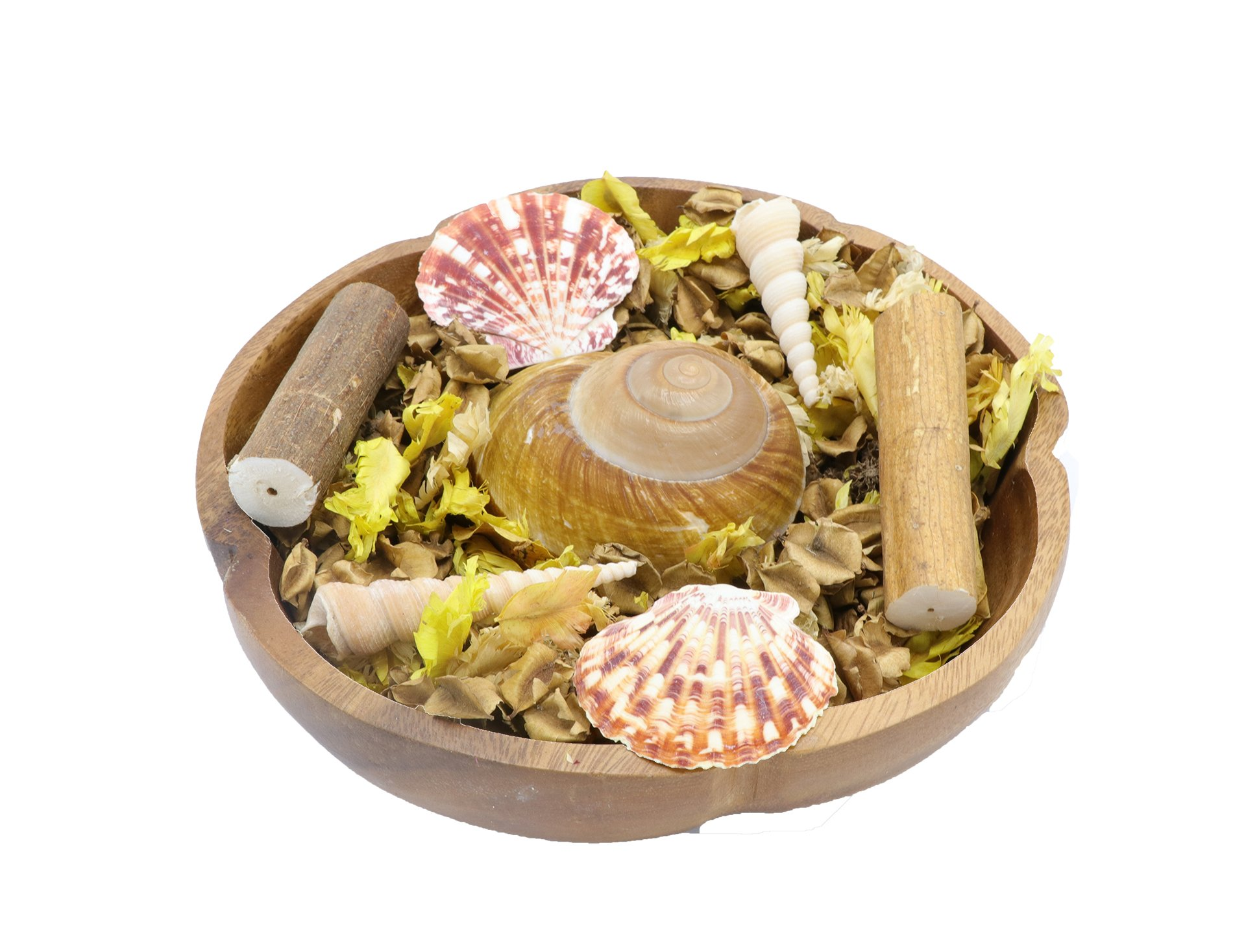 The Ambient Collection Decorative Scented Potpourri with Shells by The Ambient Collection