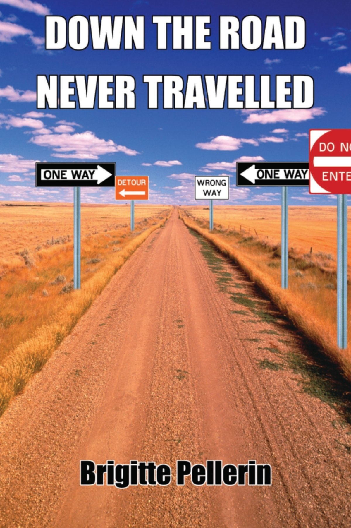 Read Online Down the Road Never Travelled ebook