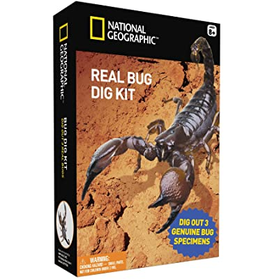 Bug Dig Kit by National Geographic by Discover with Dr. Cool