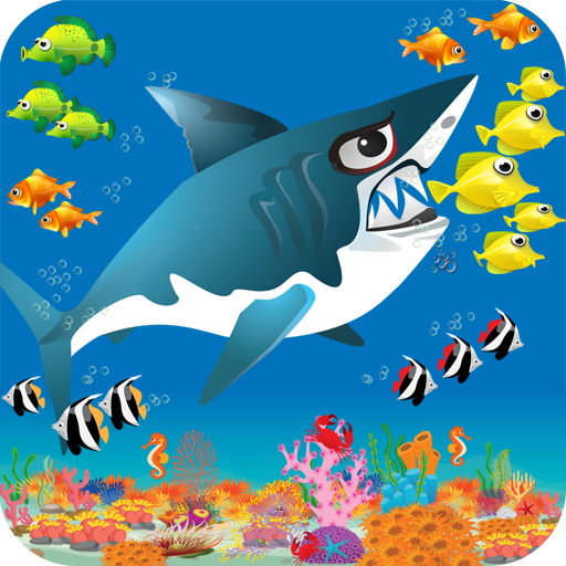 Smaller Animals (Shark Journey)