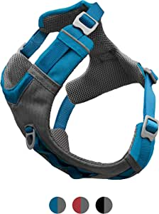 Kurgo Dog Harness for Medium, Small Active Dogs | Pet Hiking Harness for Running & Walking | Everyday Harnesses for Pets | Reflective | Journey Air | Blue/Grey 2018 | Large
