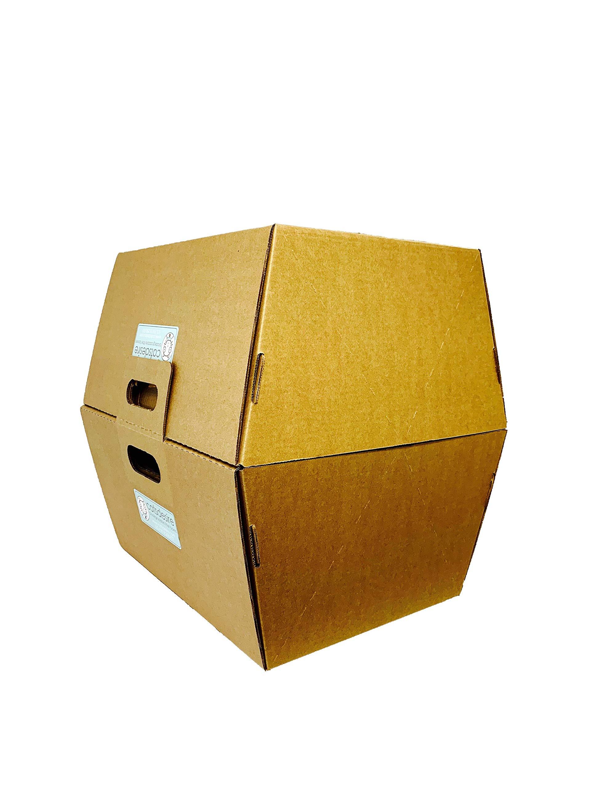 Cats Desire Disposable Litter Boxes Disposable Litter Boxes, 10 Piece 3