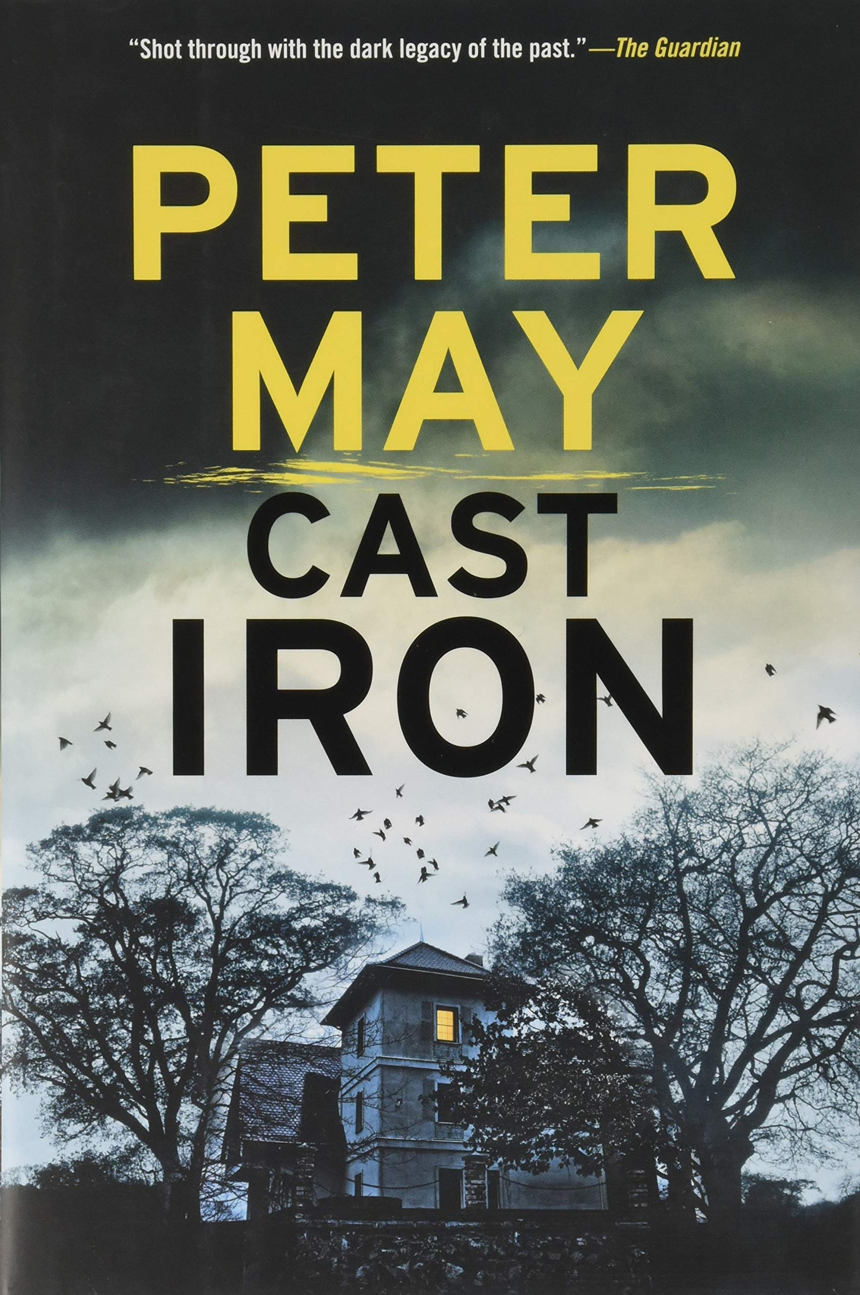 c0278611c5095 Cast Iron (An Enzo Macleod Investigation): Peter May: 9781681441610 ...