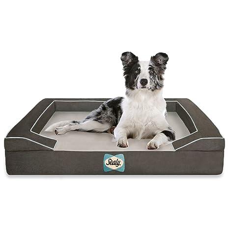 Sealy Lux Quad Capa Cama ortopédica para Perros con refrigeración Gel