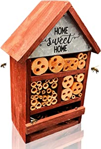 NatureZ Edge Insect House, Bee Hive, Mason Bee House, Give Your Live Ladybugs or Lacewigs a Place to Live, Attract Beneficial Bugs