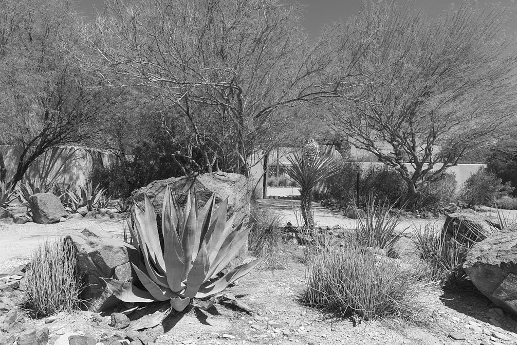 24 x 36 B&W Giclee Print A Portion The Lajitas Golf Resort Spa in Lajitas, an unincorporated Town at The spot That Separates Big Bend National Park Big Bend Ranch Stat 2014 Highsmith 39a