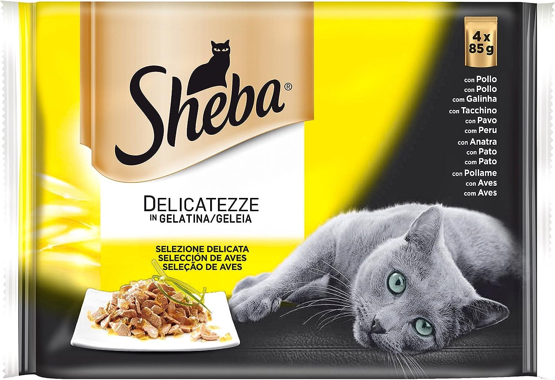 Sheba Selección de Aves Bolsitas para Gatos en Gelatina - 340 gr ...