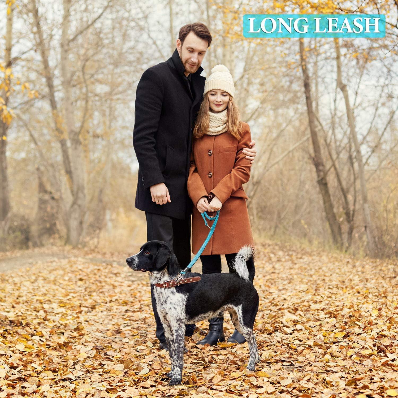 224//216cm*2cm Yangbaga Hundeleine 4-Fach Verstellbar Hundef/ürleine Doppelleine Freestyle-Hundef/ürleine f/ür Gro/ße und Kr/äftige Hunde F/ür Zwei Hunde