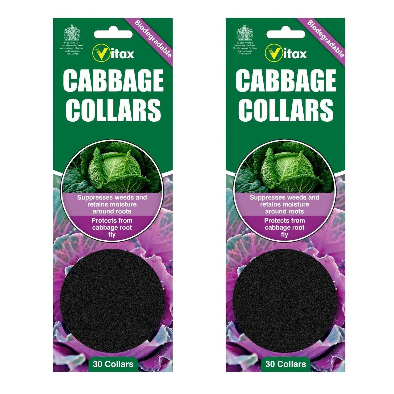 3XCabbage Collars Deters Root Flies /& Repels Slugs Snails Weeds