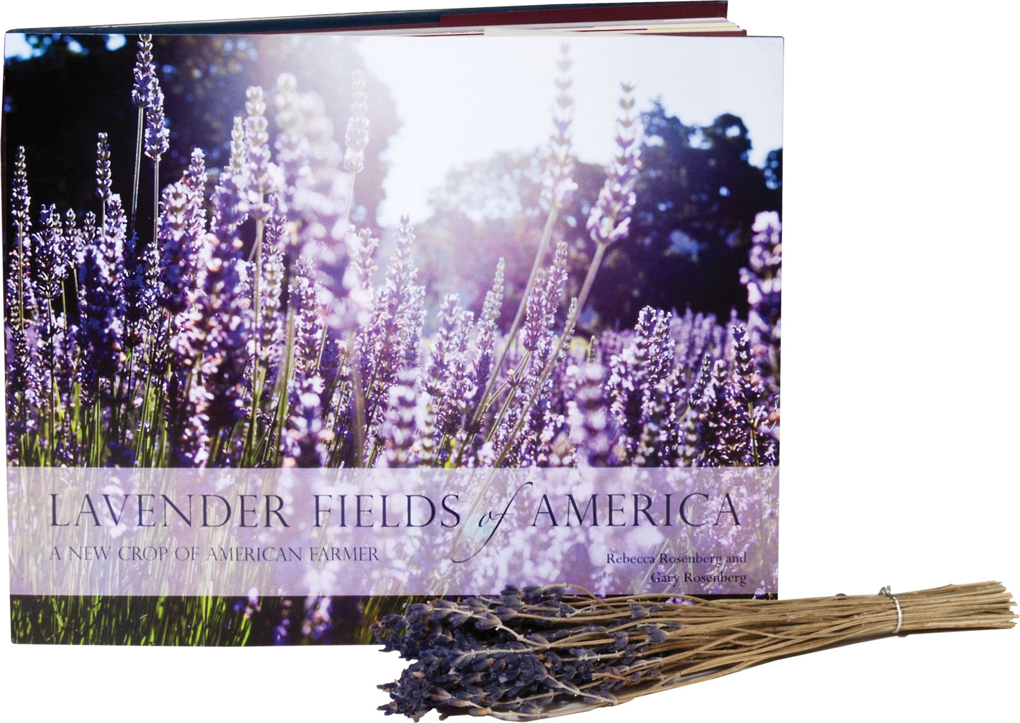 Download Lavender Fields of America, a New Crop of American Farmers pdf epub