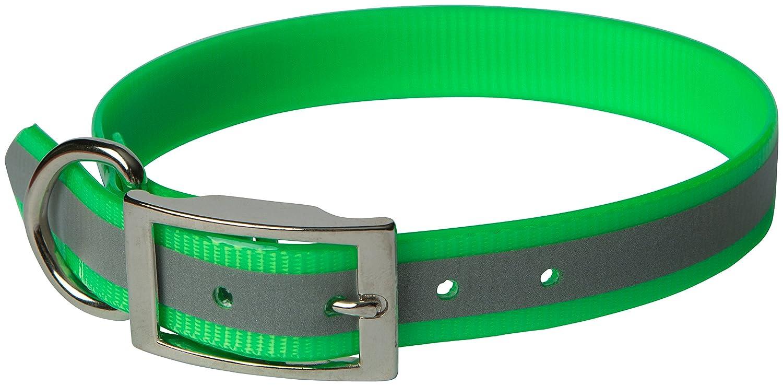 Green 1\ Green 1\ OmniPet 100D-RFGR25 Sun Glow Reflective Regular Dog Collar, 1  x 25 , Green