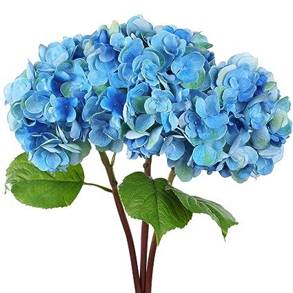 Amazon rinlong artificial hydrangeas stems 3pcs blue silk rinlong artificial hydrangeas stems 3pcs blue silk hydrangea flowers for diy crafts floral arrangement wedding bouquet mightylinksfo