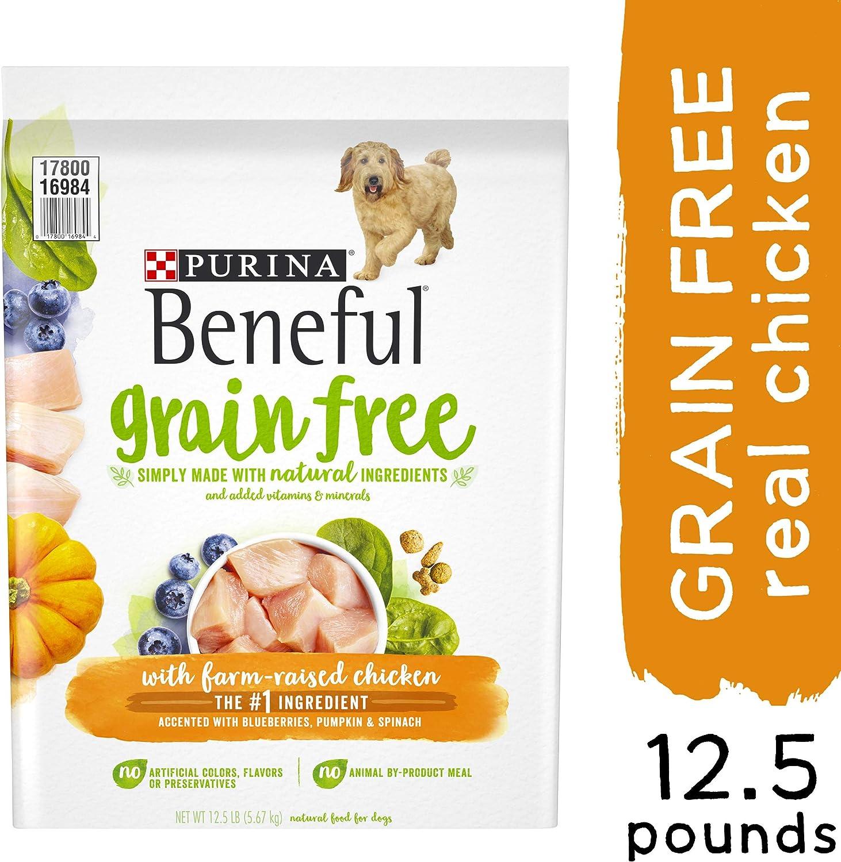 Purina Beneful Adult Dry Dog Food