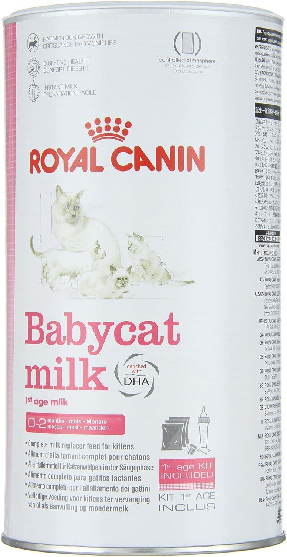 Royal Canin C-58410 Baby Leche Gato - 300 gr: Amazon.es: Productos ...