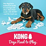 KONG - Puppy Toy - Natural Teething Rubber - Fun to Chew, Chase and Fetch