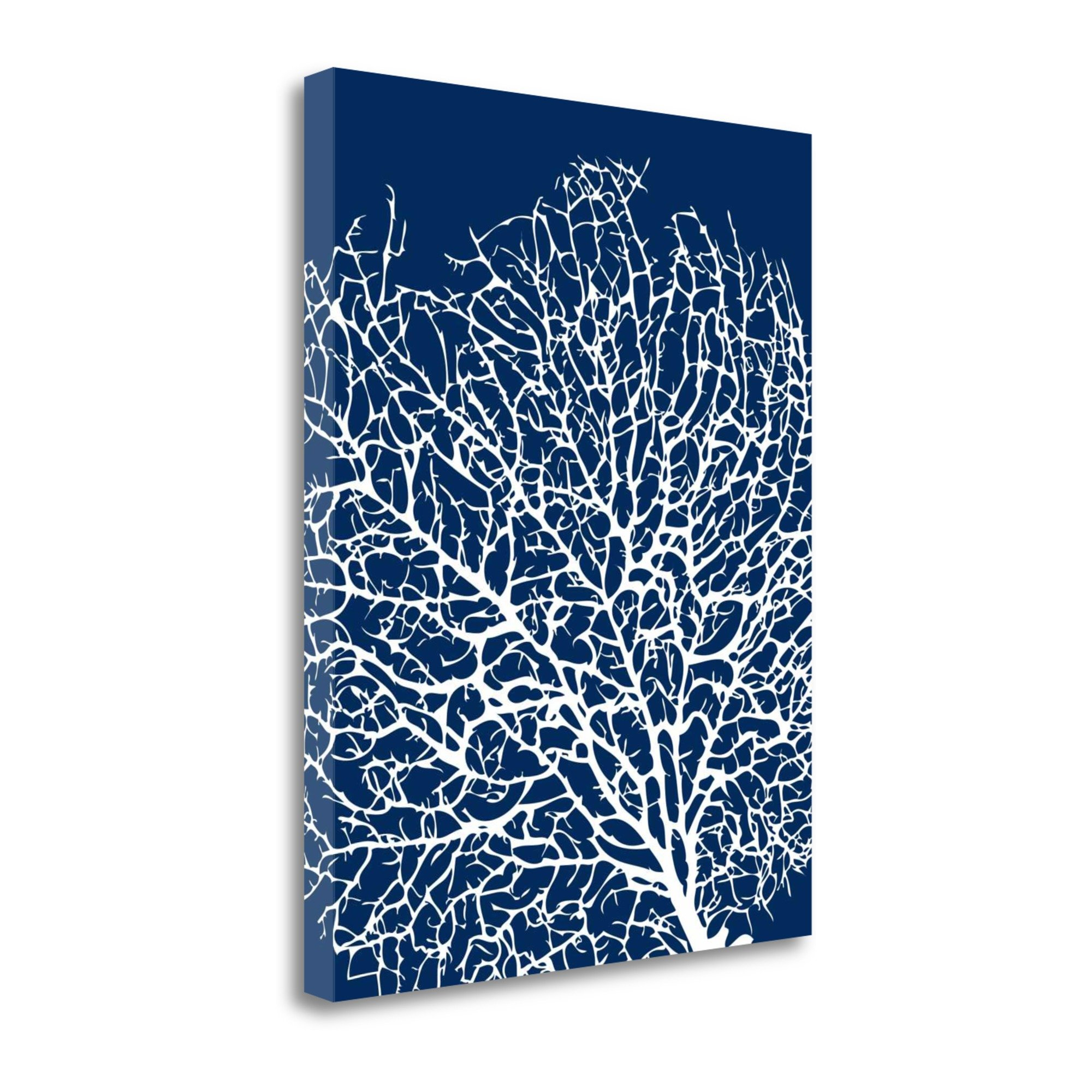 ''Navy Coral I'' By Sabine Berg, Fine Art Giclee Print on Gallery Wrap Canvas, Ready to Hang