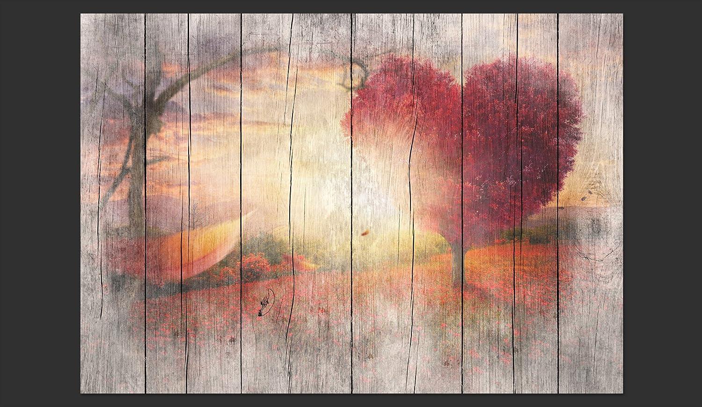 murando Fotomurales Madera Optico 450x315 cm XXL Papel pintado tejido no tejido Decoraci/ón de Pared decorativos Murales moderna de Diseno Fotogr/áfico Paisaje Arbol Corazon f-C-0175-a-a