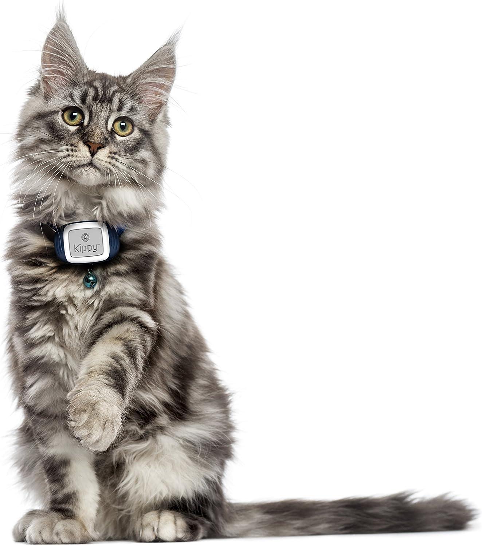 Kippy - GPS para Mascotas con Tarjeta sim e Servicio de ...