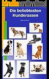 Die beliebtesten Hunderassen