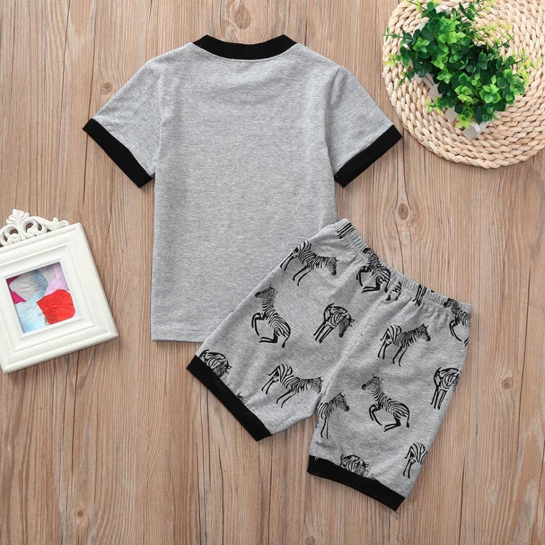 a05bc191ff Amazon.com  Hot Sale Toddler Baby Girls Boys Kids Summer Pajamas Outfit  Clothes Cartoon Cat Zebra Print Tops Shorts 2pcs Set  Clothing