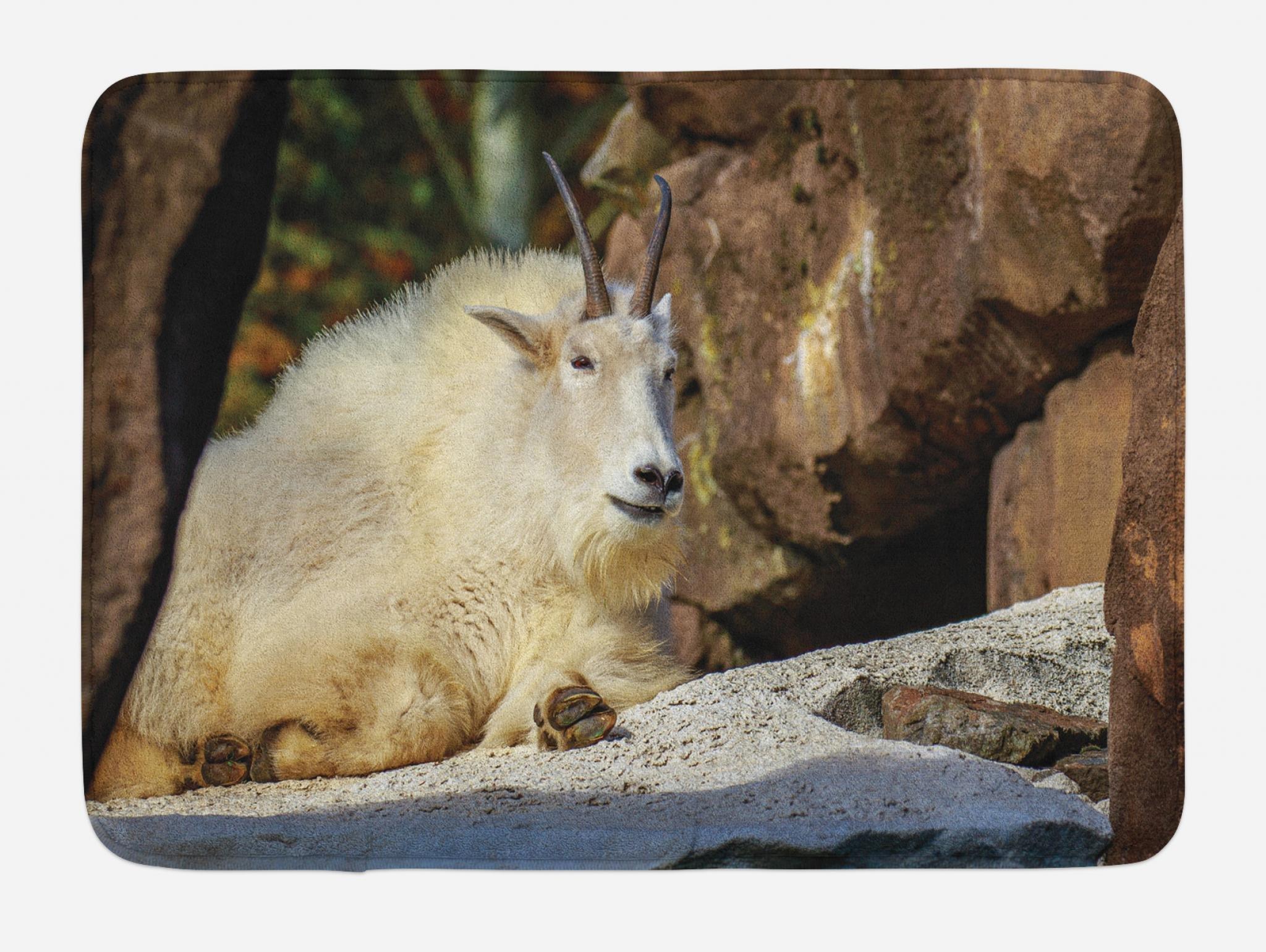 Lunarable Goat Bath Mat, White Mountain Goat Sunbathing on a Rocky Slope Idyllic North America Scene, Plush Bathroom Decor Mat with Non Slip Backing, 29.5 W X 17.5 W Inches, Brown Cream and Grey