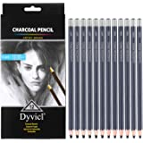 Dyvicl Professional Charcoal Pencils Drawing Set - 12 Pieces Soft Medium Hard Charcoal Pencils for Drawing, Sketching, Shadin