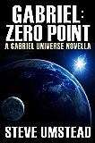 Gabriel: Zero Point (Evan Gabriel Trilogy Book 0)