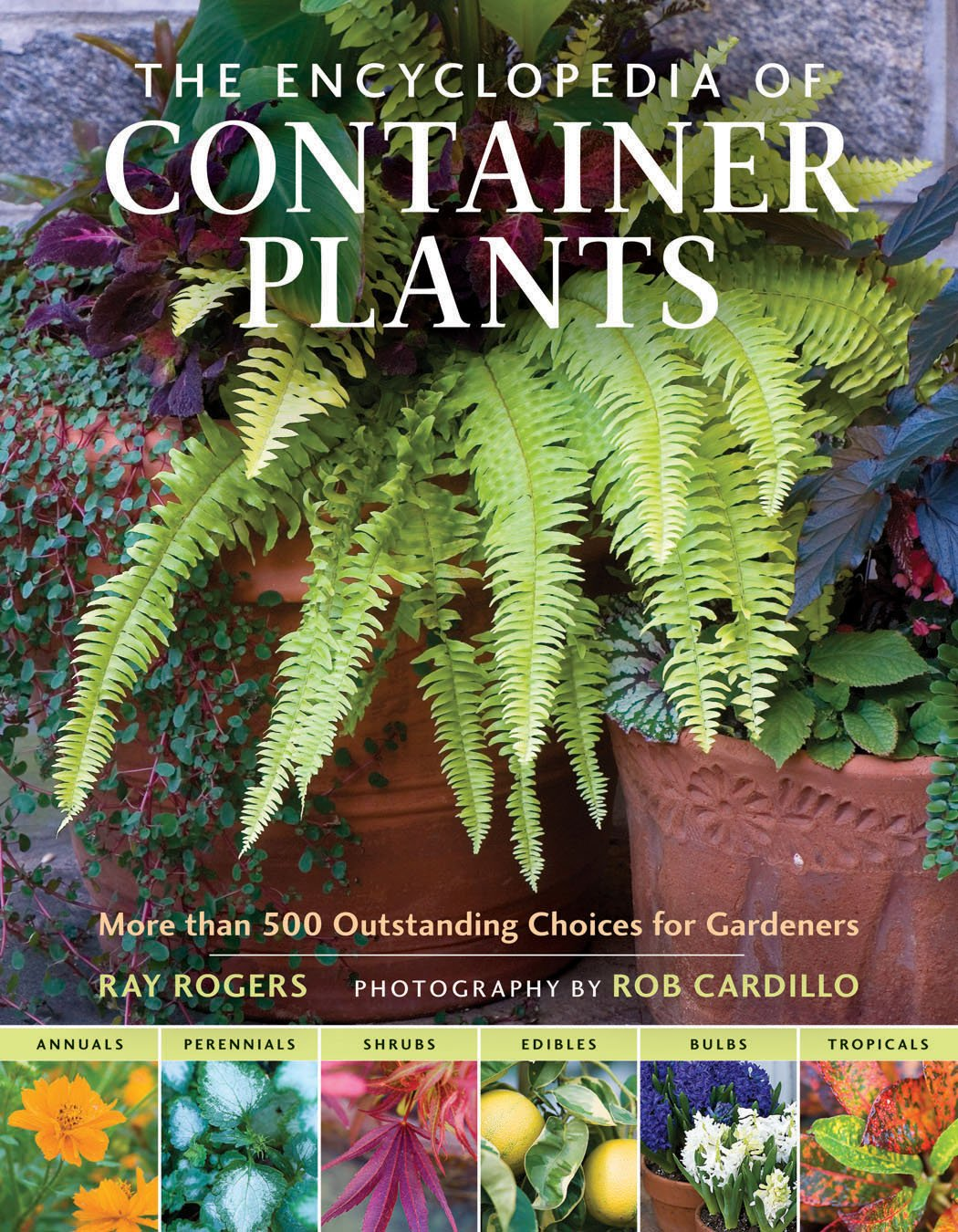 The Encyclopedia Of Container Plants More Than 500 Outstanding