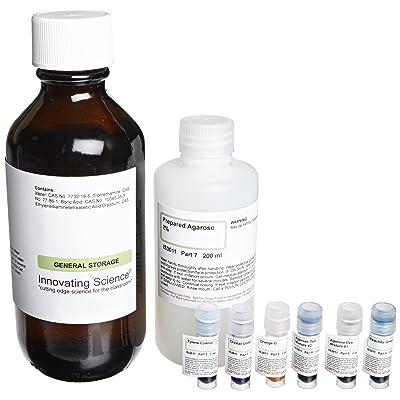 Innovating Science Electrophoresis: Agarose Gel Separation of Dyes Kit: Industrial & Scientific
