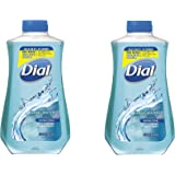 Dial Antibacterial Liquid Hand Soap Refill, Spring Water 32 oz(pack of 2)