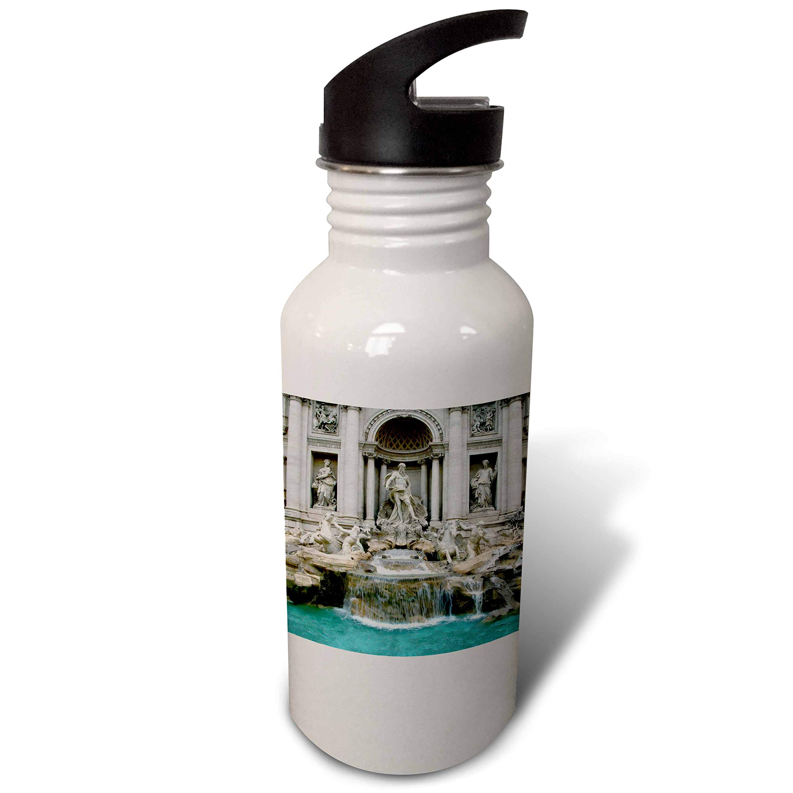 3dRose Elysium Photography - Architecture - Trevi Fountain, Rome, Italy - Flip Straw 21oz Water Bottle (wb_289636_2)