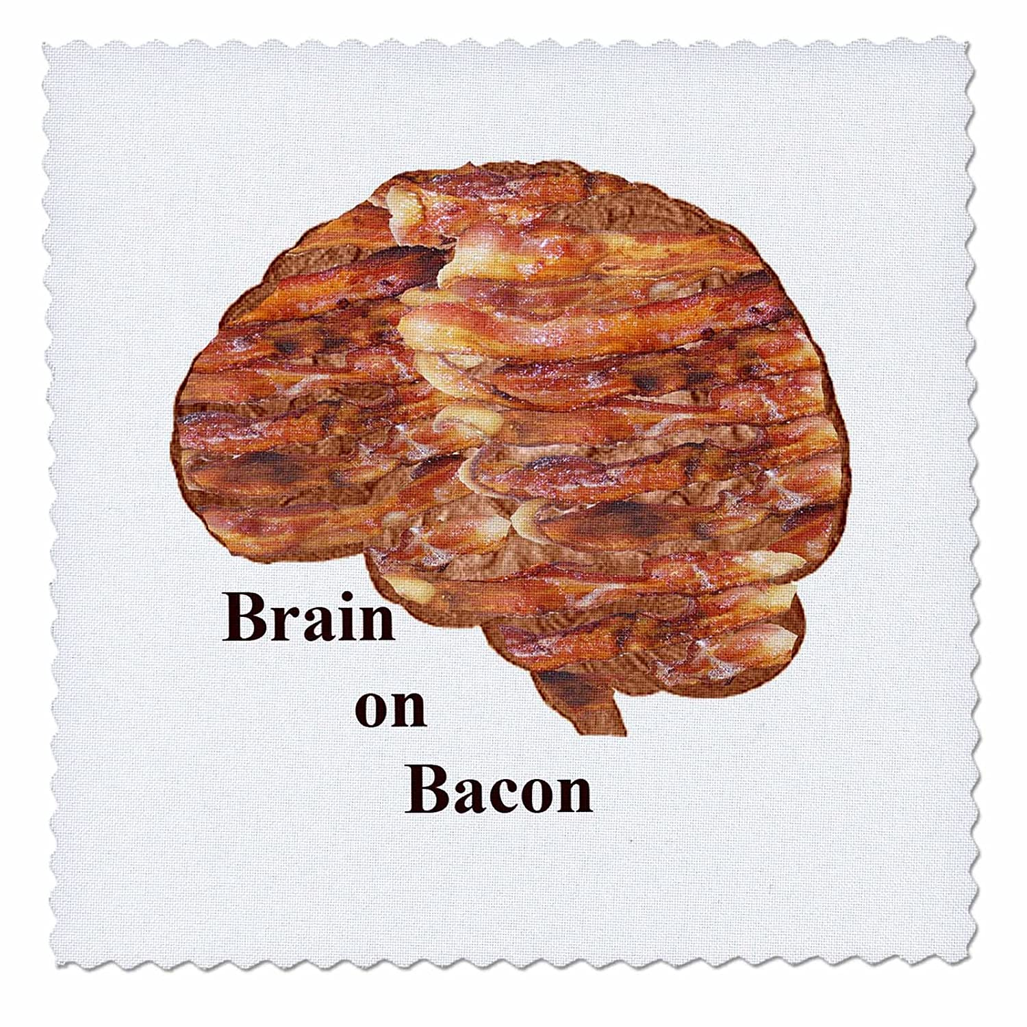 10 by 10-Inch 3dRose qs/_44534/_1 Brain on Bacon-Quilt Square