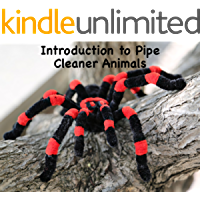 Introduction to Pipe Cleaner Animals: Volume 1