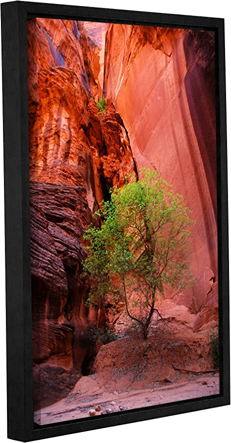Amazon Com Artwall Dan Wilson S Utah Green Tree Red Canyon Gallery Wrapped Floater Framed Canvas Artwork 16 By 24 Inch Home Kitchen