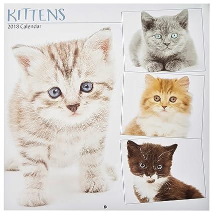 2018 gatos Gatitos de pared cuadrado 16 meses calendario – mascotas Navidad regalo de cumpleaños oficina