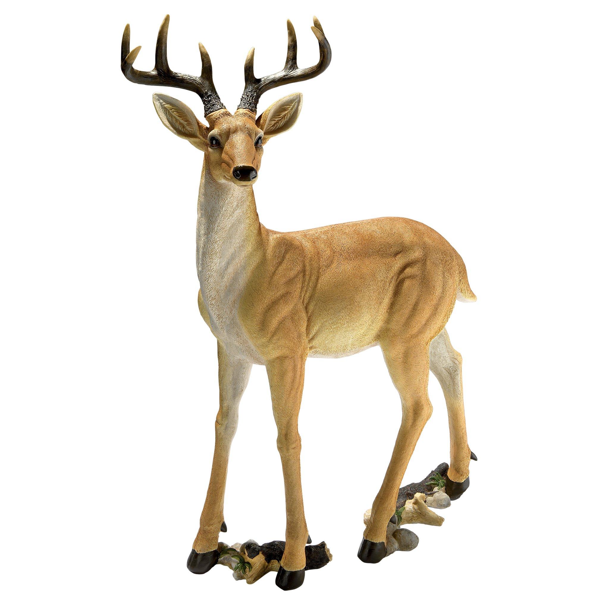 Design Toscano Buck Deer Statue by Design Toscano