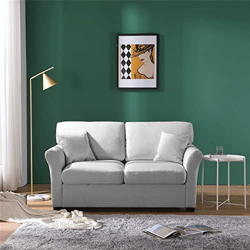 Modern Loveseat Sleeper Sofa