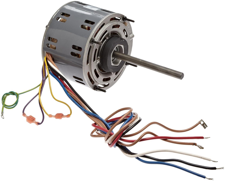 Fasco D721 Wiring Diagram   Wiring Diagram on