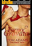 Terno & Gravata (Homens Maduros Livro 1)