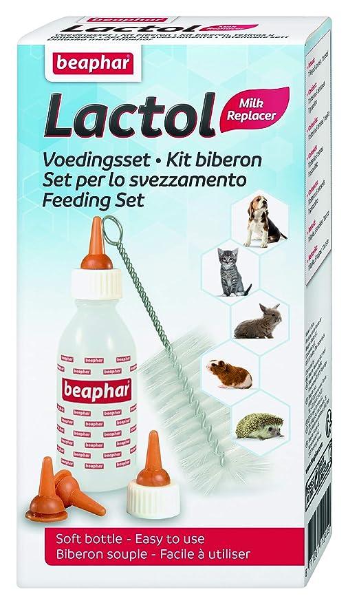 Beaphar Kit Biberón con Tetinas y Cepillo Limpiador