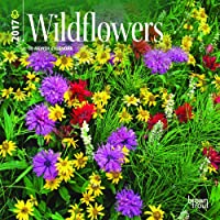 Wildflowers 2017 Mini 7x7 Wall Calendar