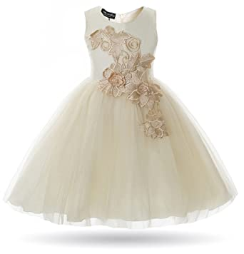 7d12626e469e Amazon.com  CIELARKO Girl Dress Kids Flower Appliques Tulle Wedding ...